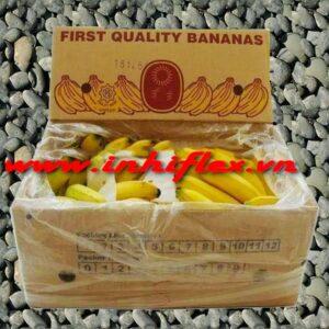 In thùng giấy đựng trái cây